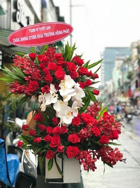 Hoa phong lan nổi bật với độ tươi lâu