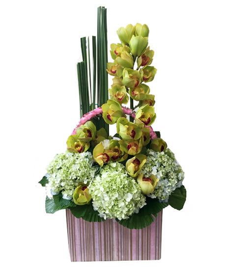 Một giỏ hoa cẩm tú cầu đơn giản nhưng không hề đơn điệu