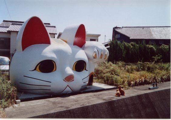 Xin chào! Mình là chú mèo thần tài với cái đầu to nhất đây!