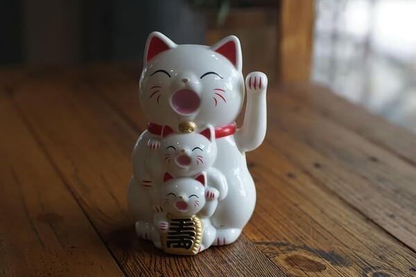 Hình ảnh mèo thần tài gia đình thật đáng yêu
