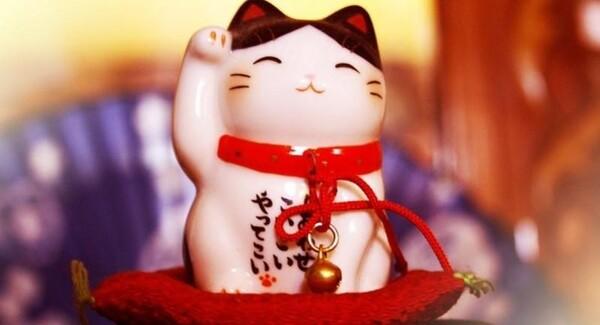 """Hình Mèo thần tài được buộc chuông vàng trước bụng """"so cute"""""""