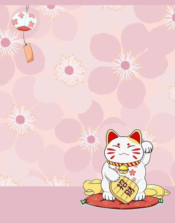 Hình nền mèo thần tài xem pháo hoa siêu xinh