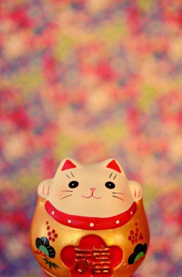 Đặc điểm nổi bật của Mèo thần tài vẫy tay là thân hình mập mạp với khuôn mặt tròn, luôn tươi cười