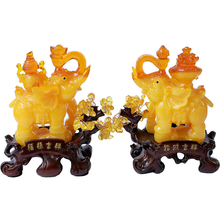 Cap-Voi-Phong-Thuy-Vang-2