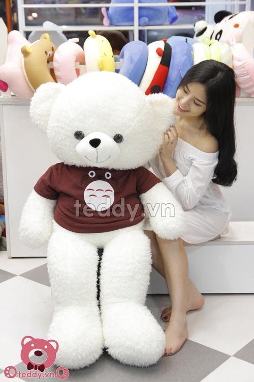 Teddy áo totoro GB792
