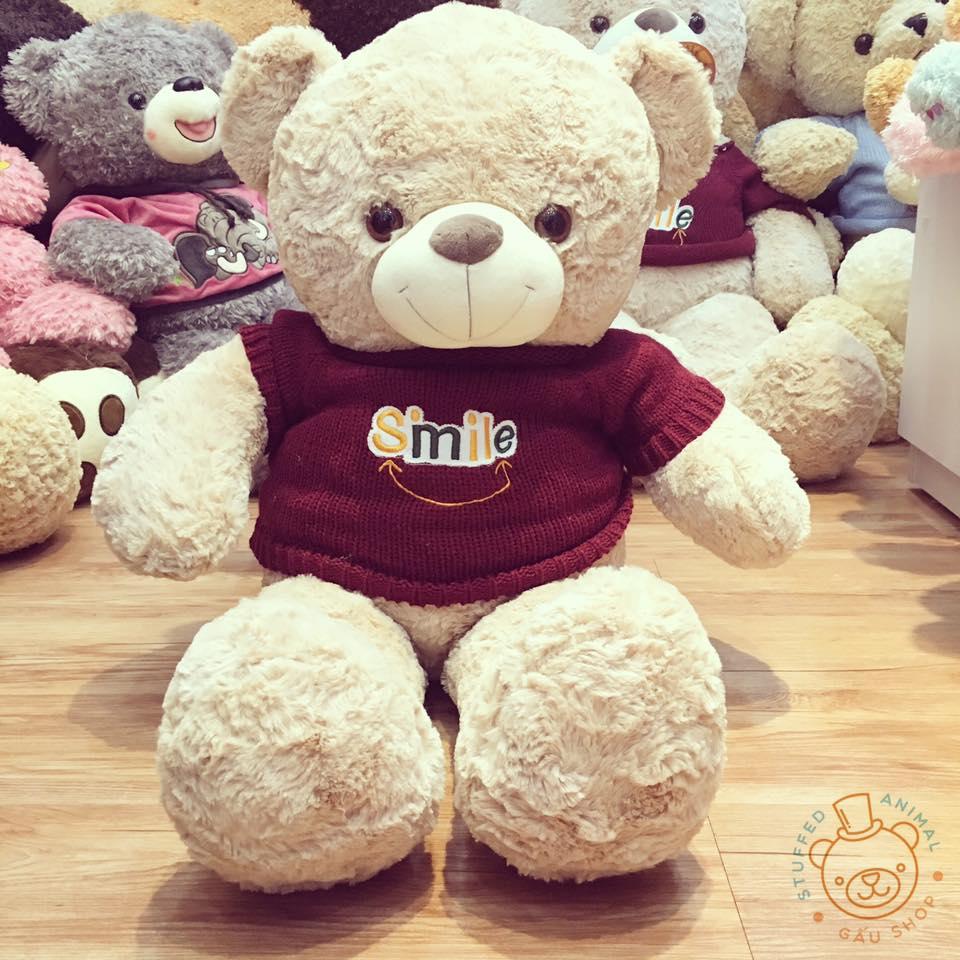 teddy_moi_5