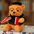 Gấu bông tốt nghiệp GB261