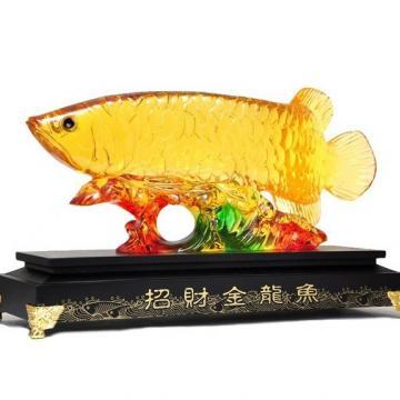 Kim long ngư H20033
