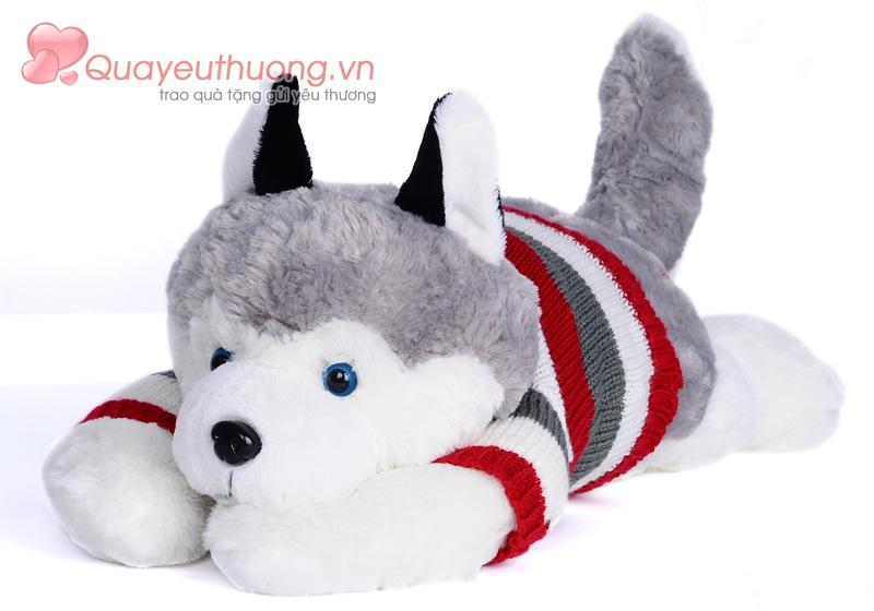cho-bong-husky-1