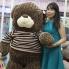 gau-teddy-choco-313x313