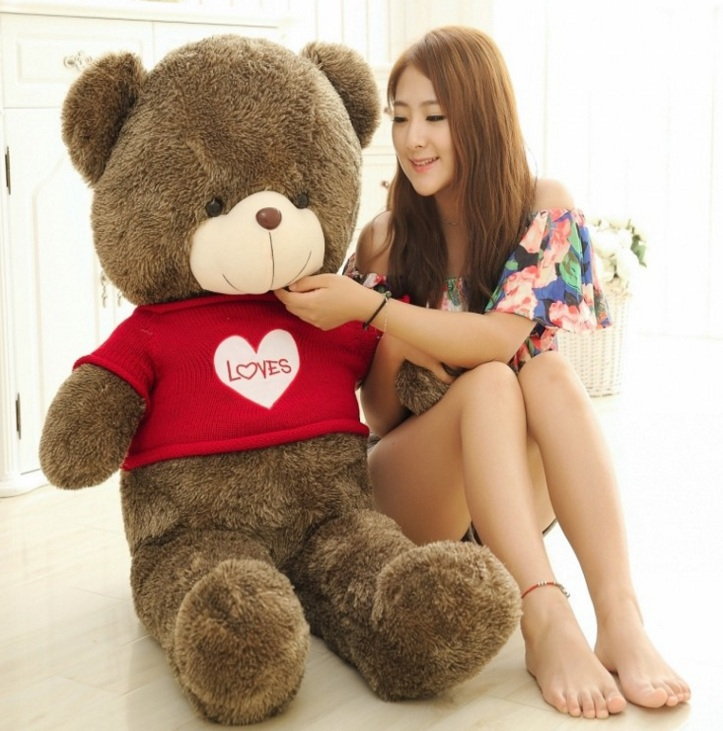 Teddy Highlight GB079