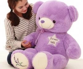 Chọn gấu bông cho cô nàng tiểu thư