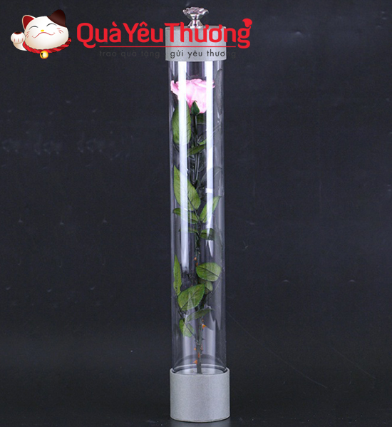 hoa-trong-lo-thuy-tinh